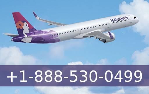How to Contact Customer Service Number of Hawaiian ...